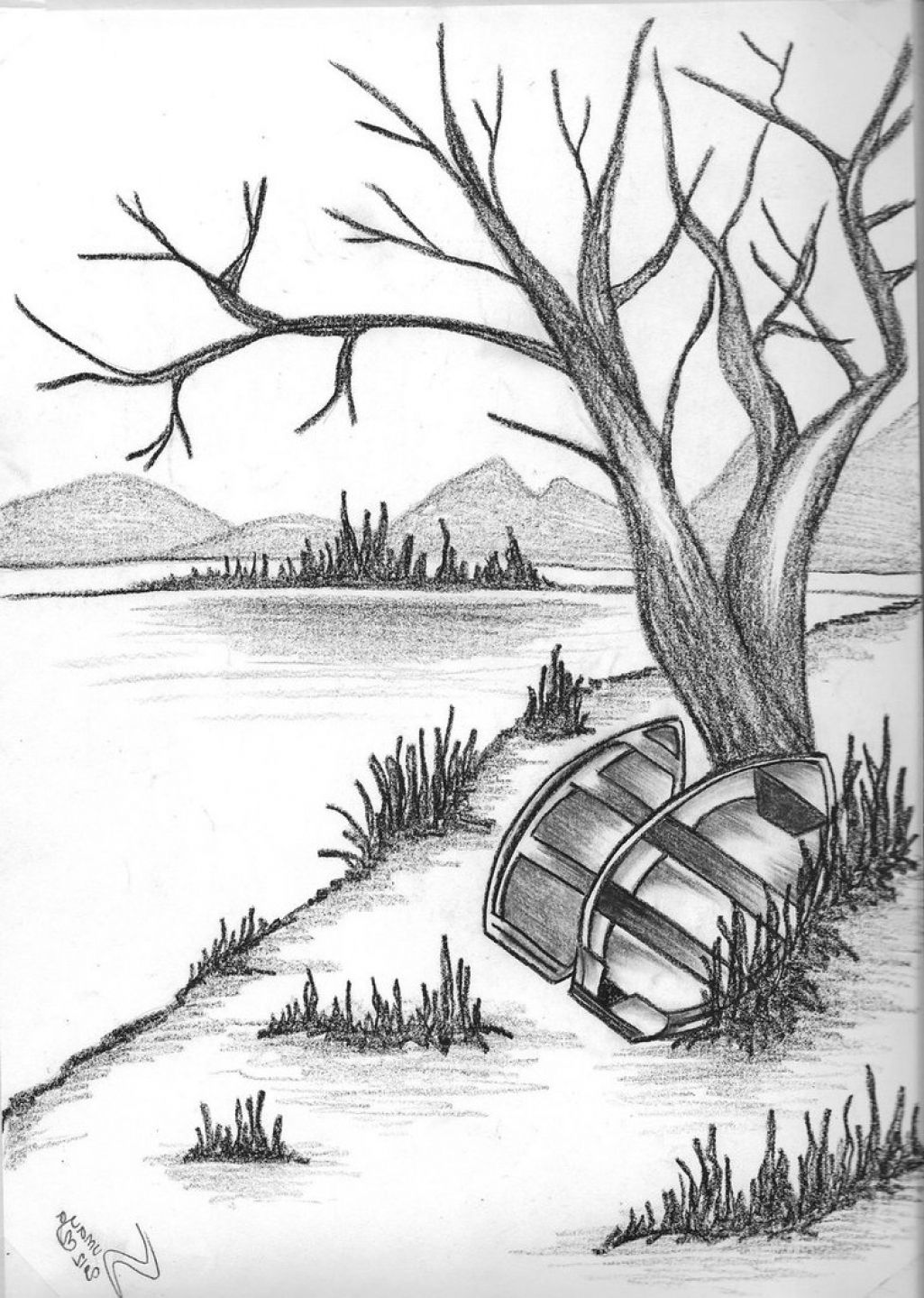 pencil drawing of natural scenery