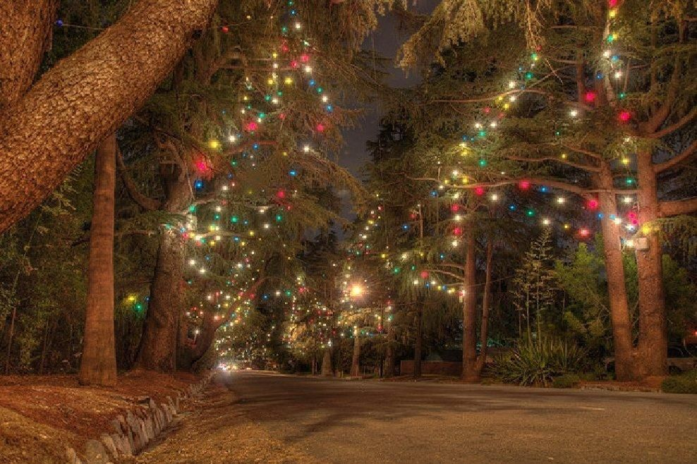 Images of Altadena Christmas Tree Lane - Home Design Ideas