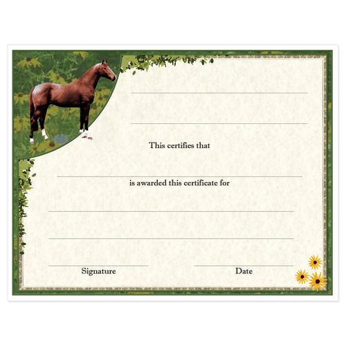 Award Certificates Full Horse Design Hodges Badge Company Horse Lessons Riding Gift Horse Camp