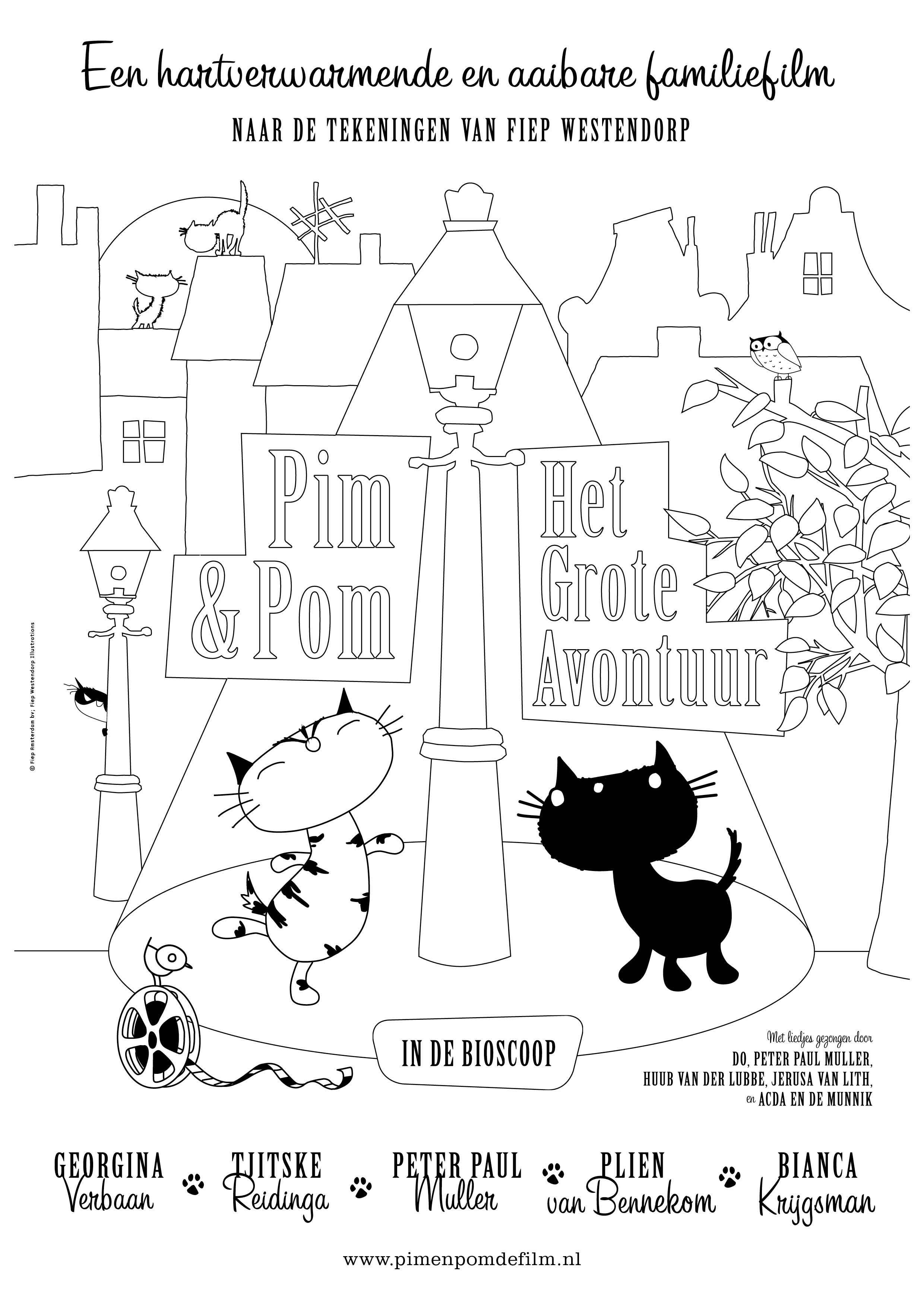 Dvd Pim En Pom Het Grote Avontuur Avontuur Filmposter Film