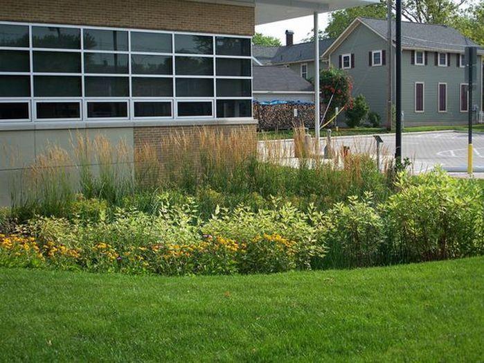 Rain Garden Design Landscaping Front Yards_24 Home Design Ideas