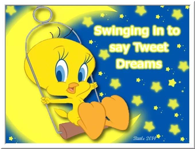 Find This Pin And More On Tweety Bird By Packmcgill
