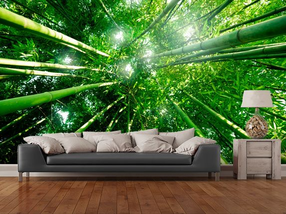 Bamboo Forest wall mural room setting Consultation Room