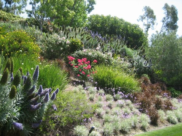 garten am hang anlegen gartenpflanzen blumen | Gartengestaltung ...