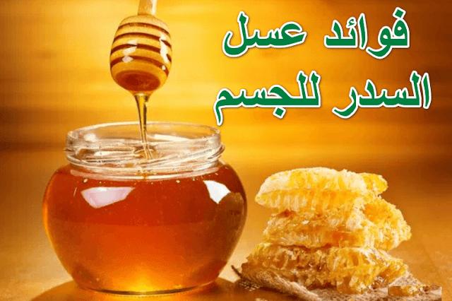 يعد عسل السدر واحد من أجود أنواع العسل حيت يحتوي على مجموعة كبيرة من الفوائد الصحية لجسم الإنسان فهو واحد من أجود أنواع عسل الدي ينتجه النحل Food Honey Benefit