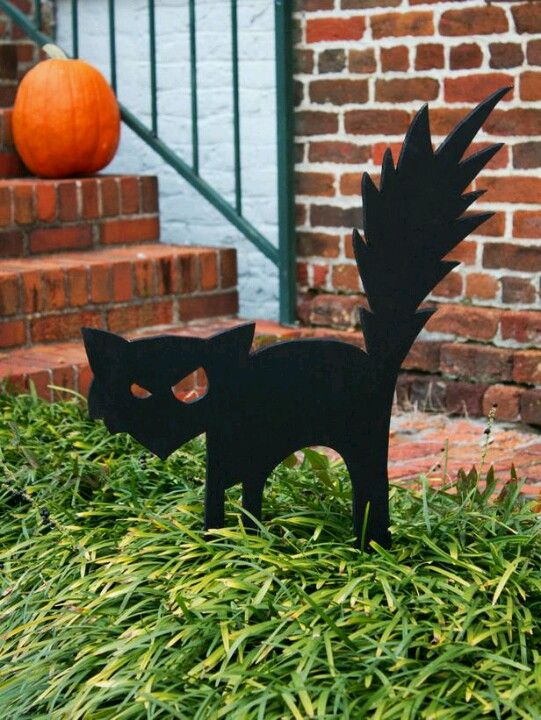 Black cat halloween / Pinterest Black cats