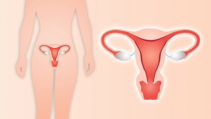 10 things your doctor won t tell you about hysterectomy