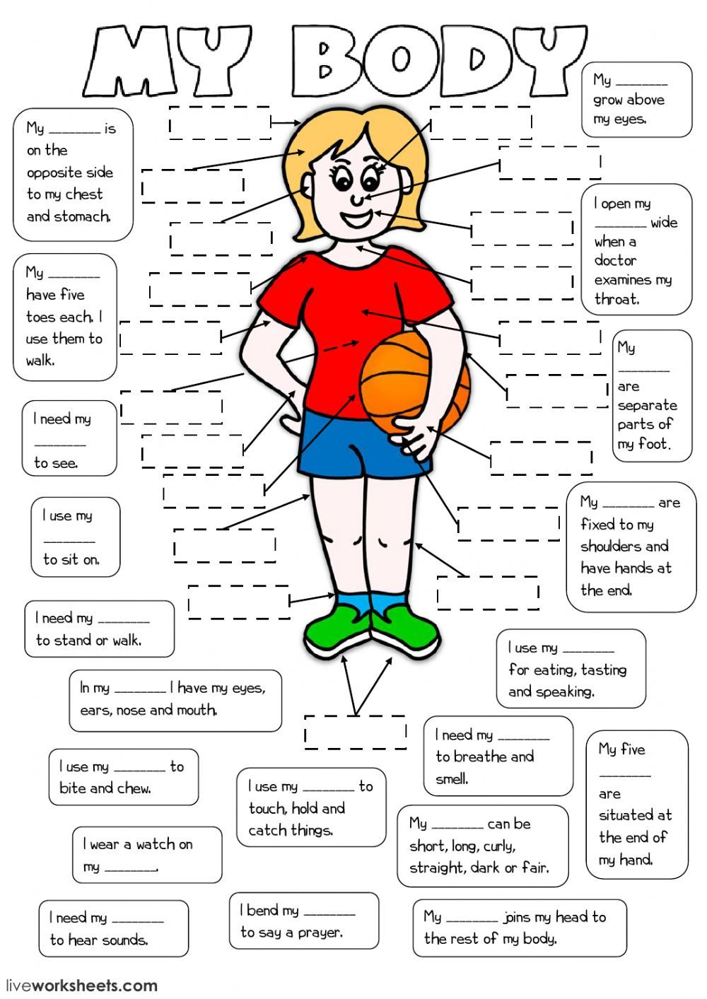 The parts of the body interactive and downloadable worksheet. You can do  the exercises on…   Human body worksheets [ 1413 x 1000 Pixel ]