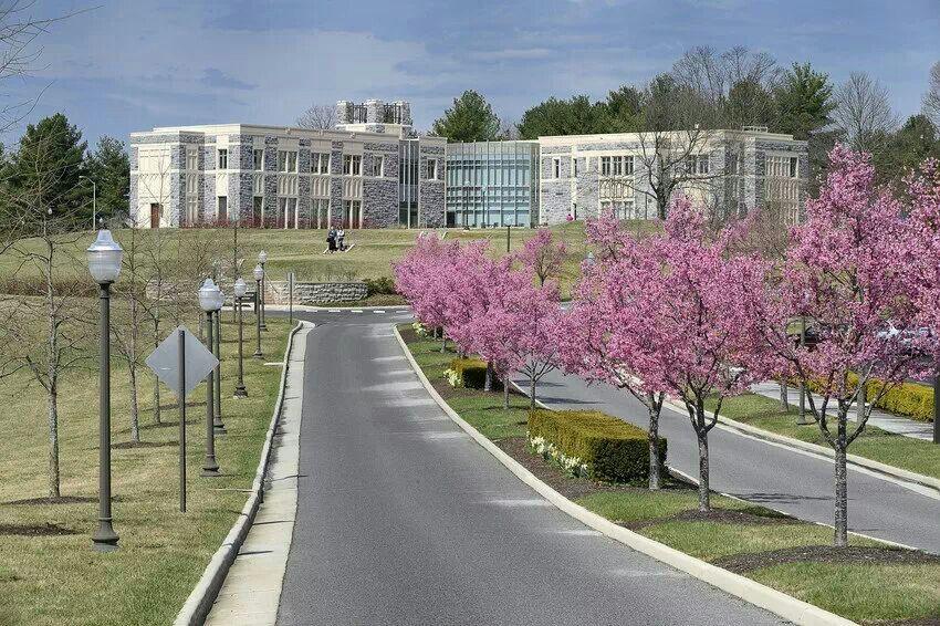 Spring 2014 Hokies, Virginia, Virginia tech