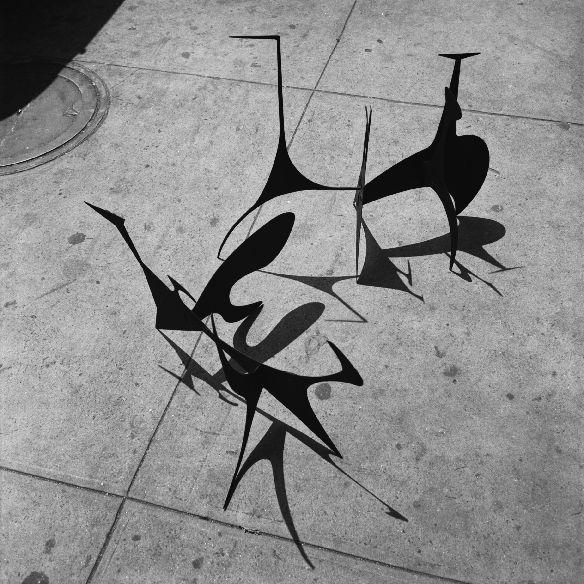 Calder by  Herbert Matter