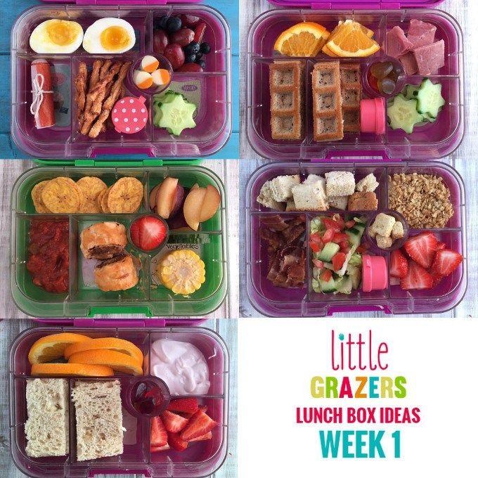 Lunch box ideas week 1 little grazers fussy eaters baby led little grazers lunch box ideas week 1 forumfinder Gallery