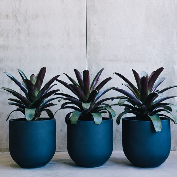 Straight Up Pots By The Balcony Garden | Garden Pots | Pot Plants | Planters  |