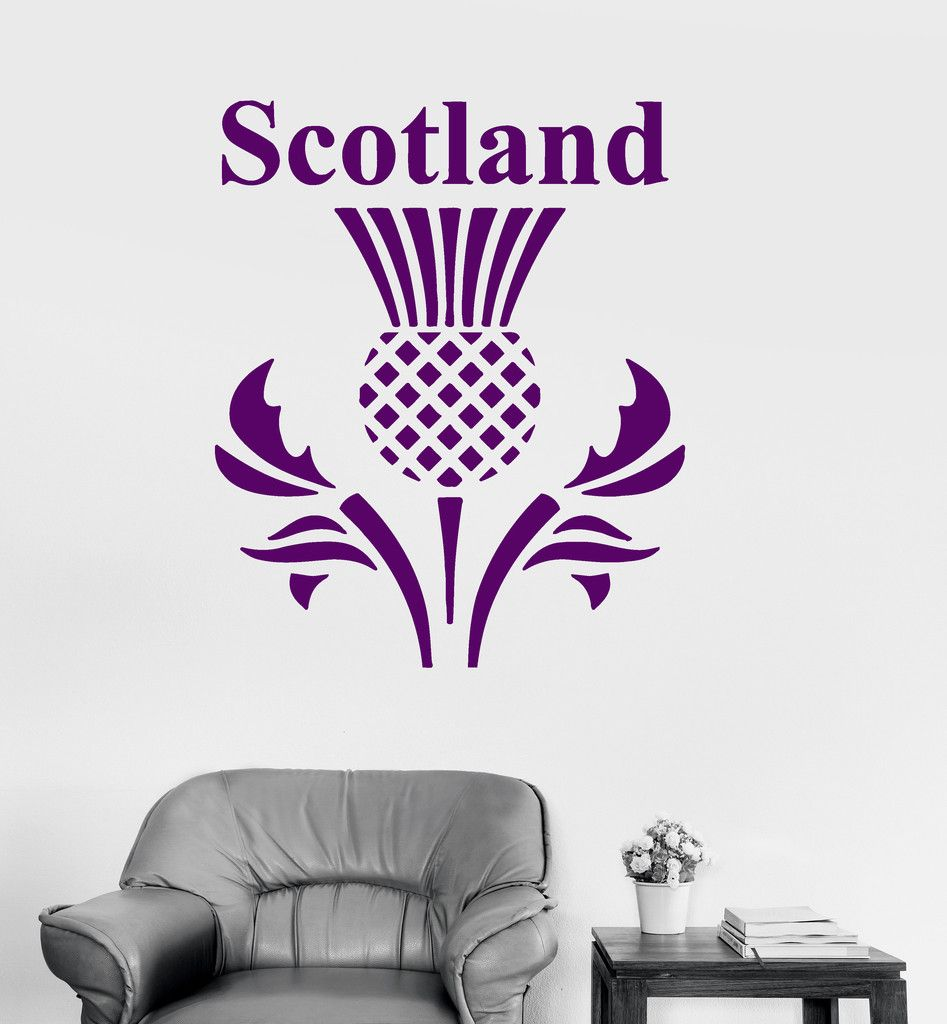 Vinyl wall decal scotland scottish thistle flower symbol stickers mural ig3270
