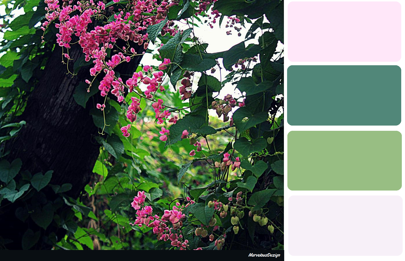 Forest Green & Pink Colour Pallette