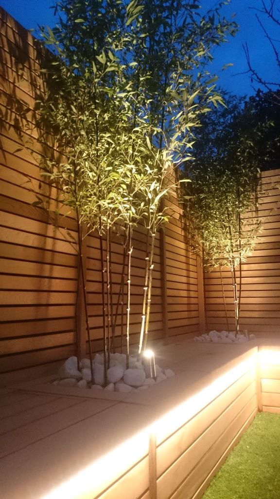 Slatted Cedar screening with black bamboo \ LED uplighters - led beleuchtung bambus arbeitsecke kuche