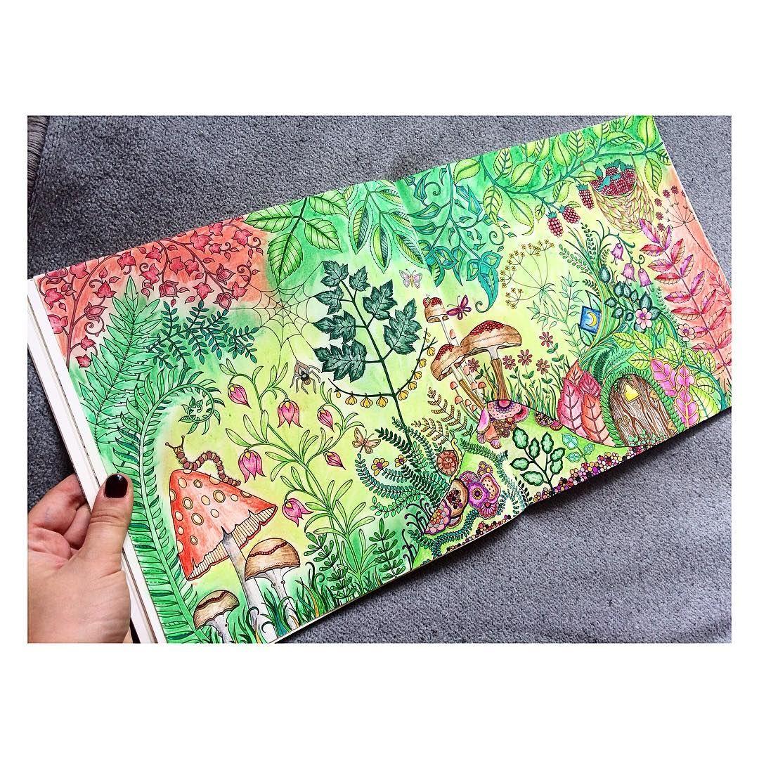 Adult Coloring Books Johanna Basford Colored Pencils Mushroom Book Art Argentina Color