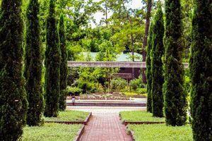 Mercer Arboretum Botanic Gardens Photographygoalz Pinterest Botanical Gardens Garden