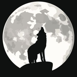 Wolf Tattoo Meanings Wolf Illustration Wolf Tattoo Meaning Tattoos With Meaning