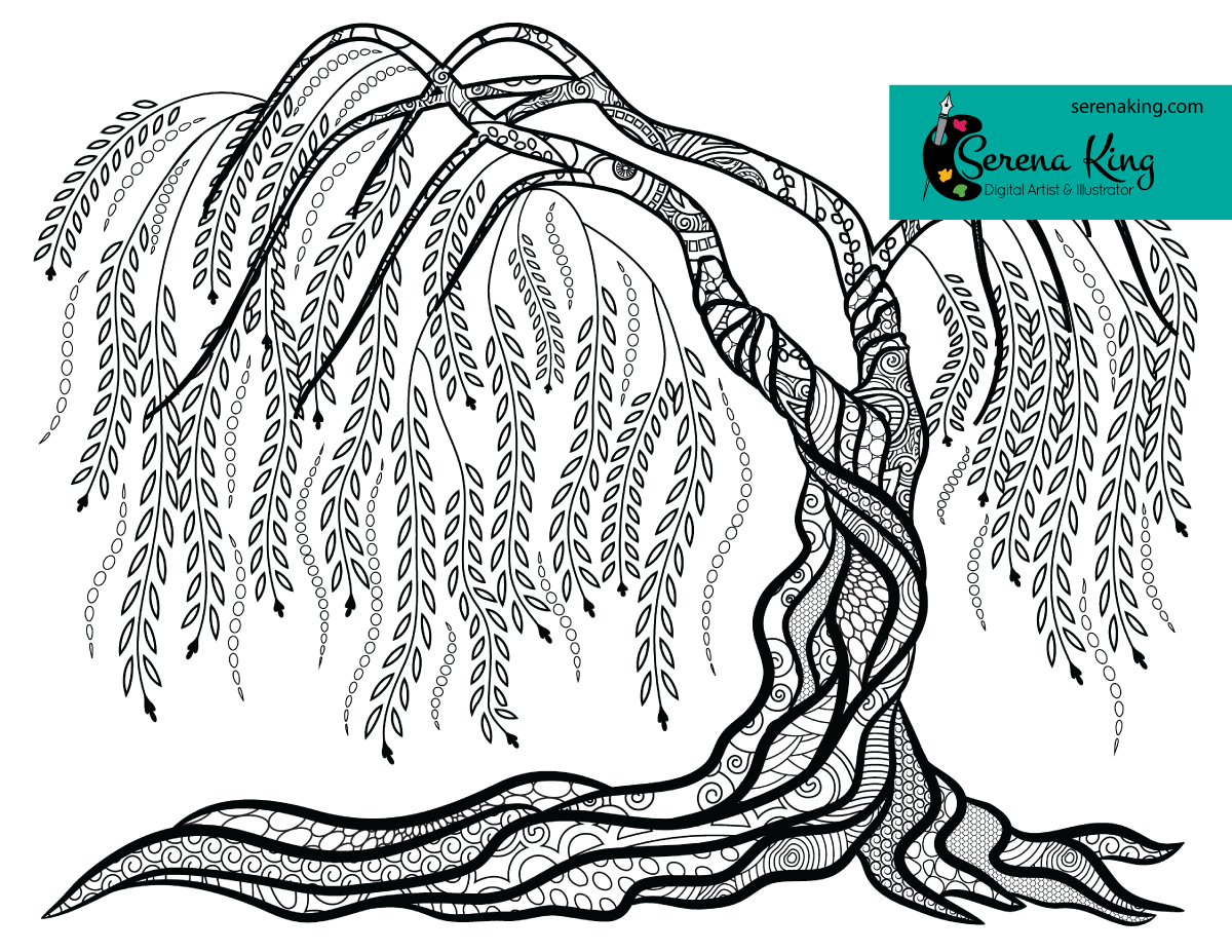 Weeping Willow Tree Coloring Page Tree Coloring Page Weeping Willow Tree Willow Tree [ 927 x 1200 Pixel ]
