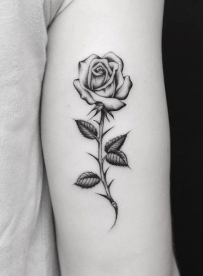 Tatuajes De Rosas Pequenas Delicada Sutil Ideas De