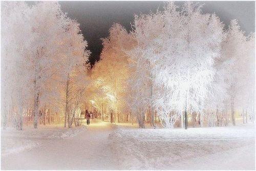 Pin von Perl pam auf Mega Schöne!!! | Bilder, Natur, Winter