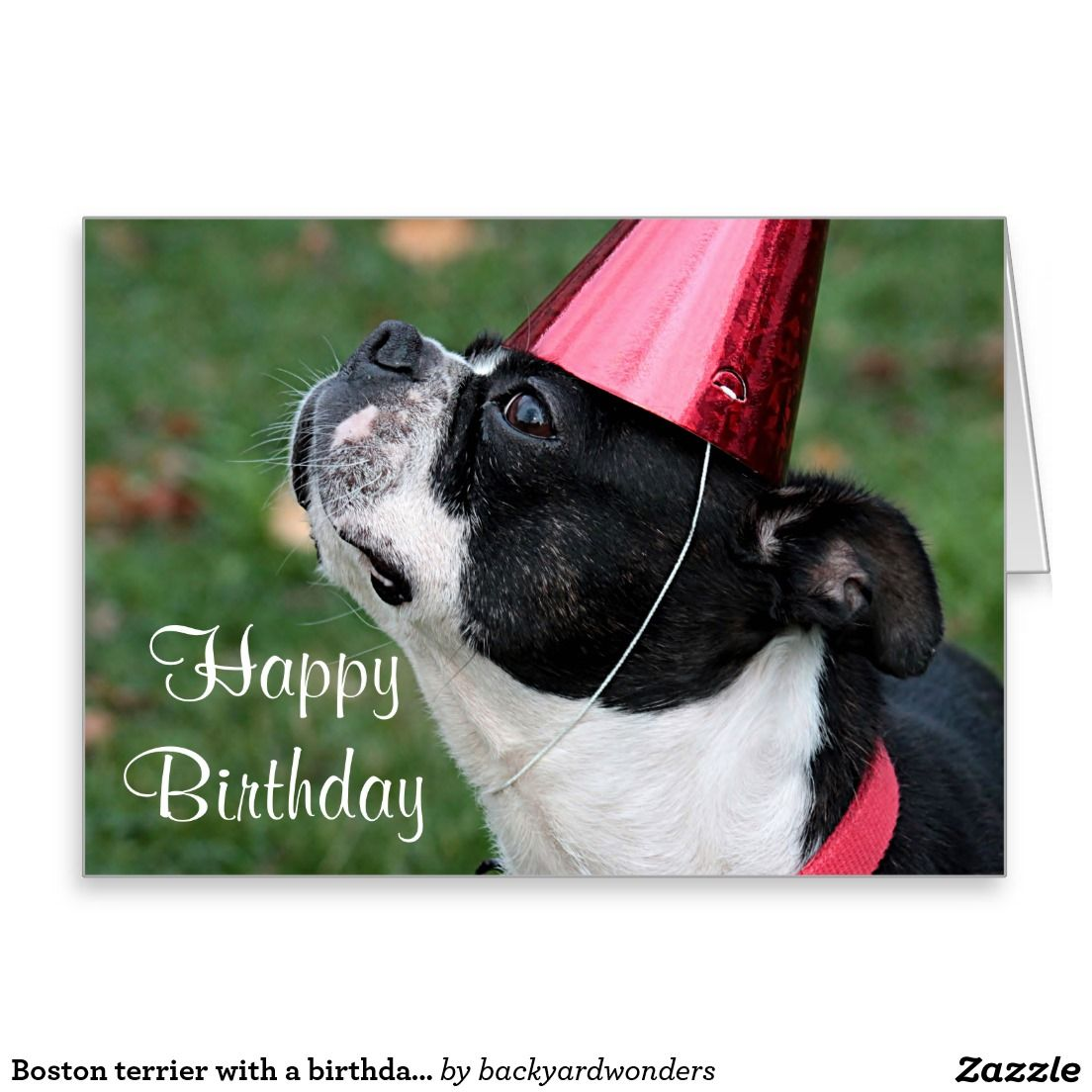 Boston Terrier With A Birthday Wish Card Zazzle Com Birthday Wishes Cards Birthday Wishes Greetings Boston Terrier Gift