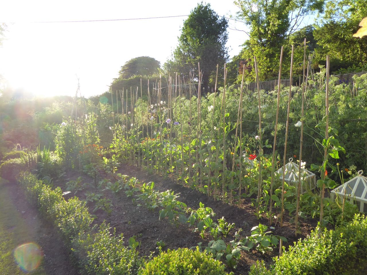 The View from Here - Ben Pentreath Inspiration | Potager ...