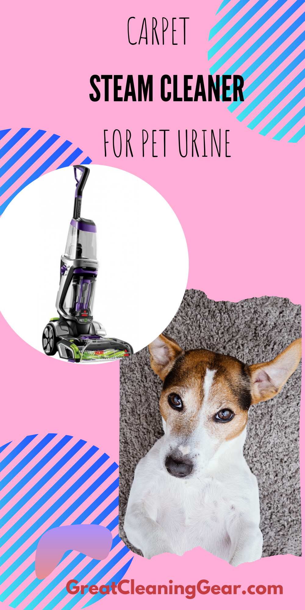 Best Steam Cleaner For Carpets With Pets Carpet Steam Cleaner Steam Cleaners Best Steam Cleaner