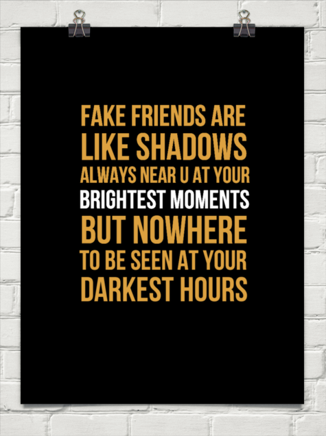 Image result for fake friends are like