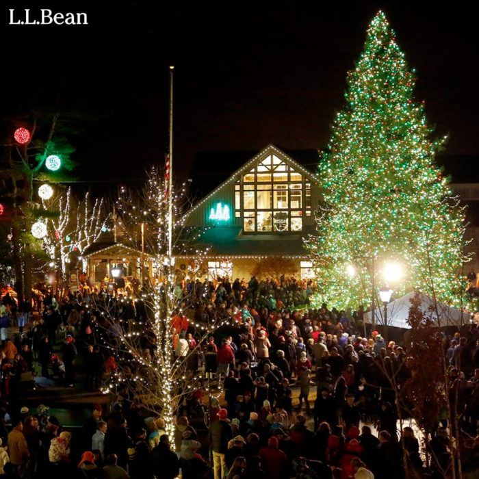 Ll Bean Christmas Trees.11 Christmas Light Displays In Maine That Are Pure Magic