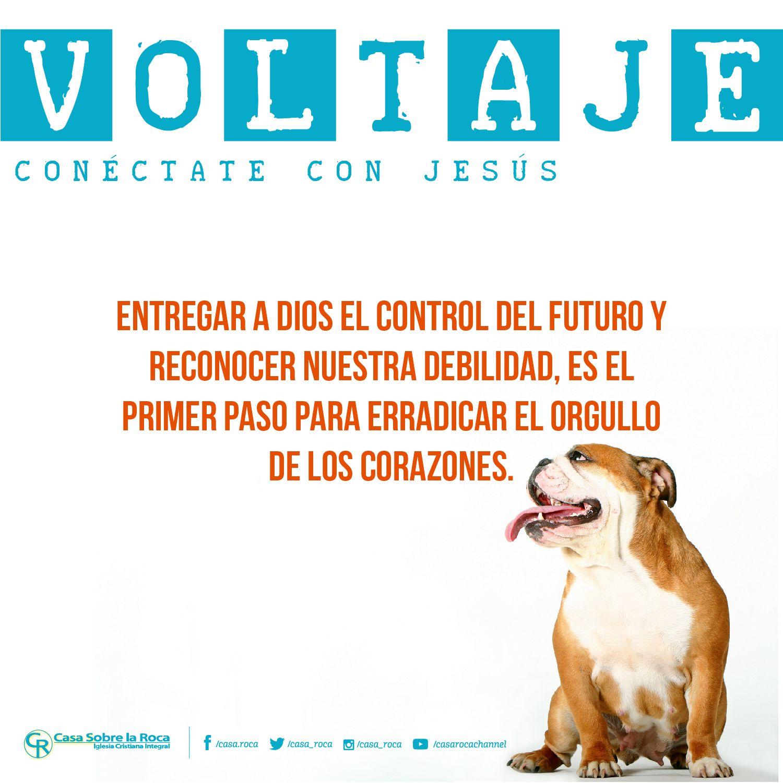 Entrega a Dios el control del futuro y reconoce tu debilidad. http://devocional.casaroca.org/jv/18ene #ConéctateConJesús.
