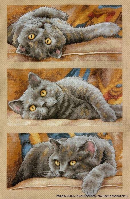 """M ax the Cat"" ~ Pattern:  http://celita.gallery.ru/watch?a=bysE-kC4S"