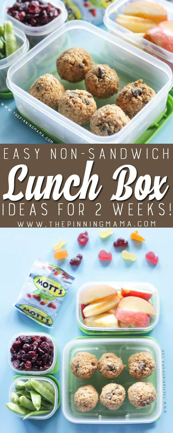 Energy bites lunch box idea just one of 2 weeks worth of non energy bites lunch box idea just one of 2 weeks worth of non sandwich forumfinder Images