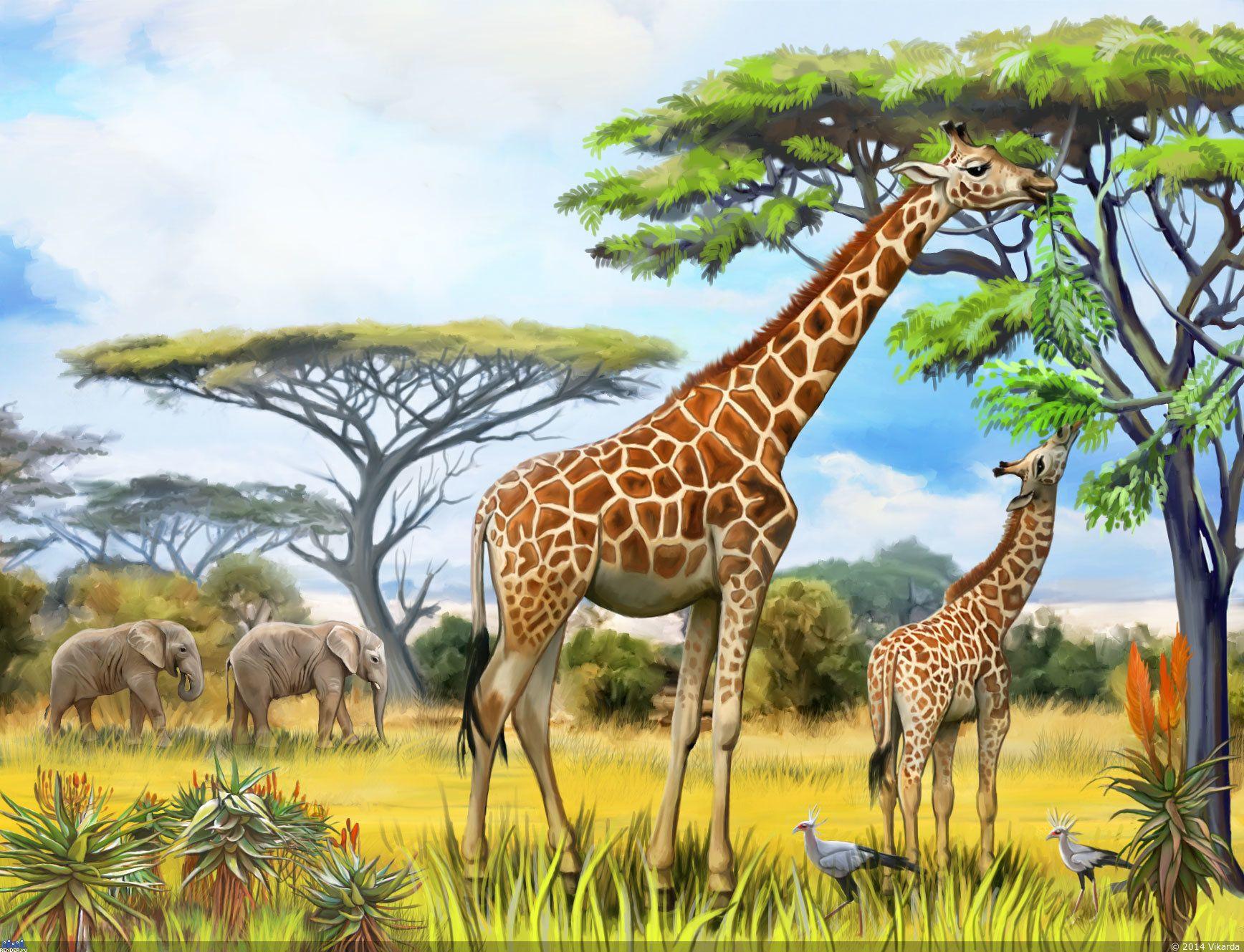 монстеры рисунок зверей африки позже отличием окончила