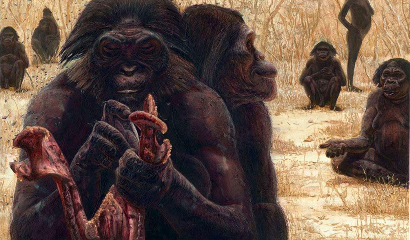 Древние предки человека картинки скандалов громких