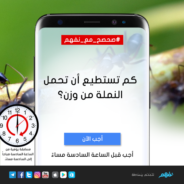 صحصح مع نفهم كم تستطيع أن تحمل النملة من وزن الفائز سحب بين جميع المشاركين بالإجابة صحيحة وسوف نعلن اسمه على صفحة نفهم 10 Things Electronic Products Phone
