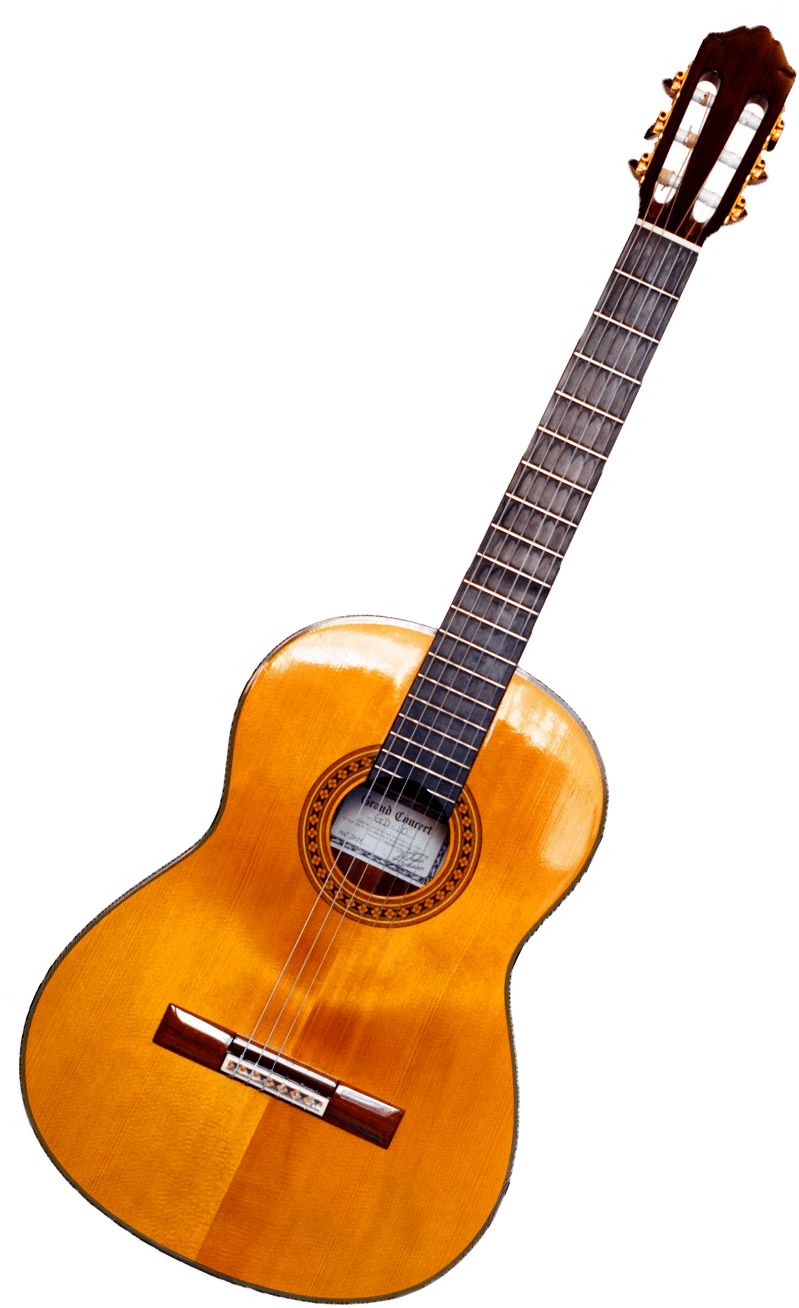 Quiz Can We Guess How Many Guitars You Have Guitar Types Of Guitar Beautiful Guitars