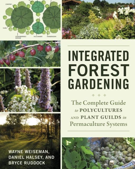 A complete guide to polycultures and plant guilds in ...