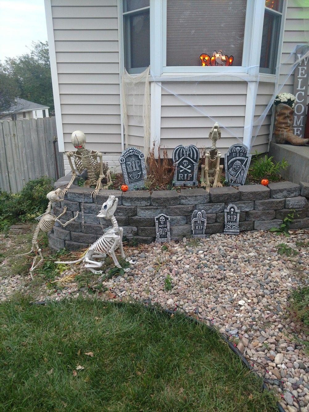 pet cemetery. skeleton. dog skeleton. halloween decorations