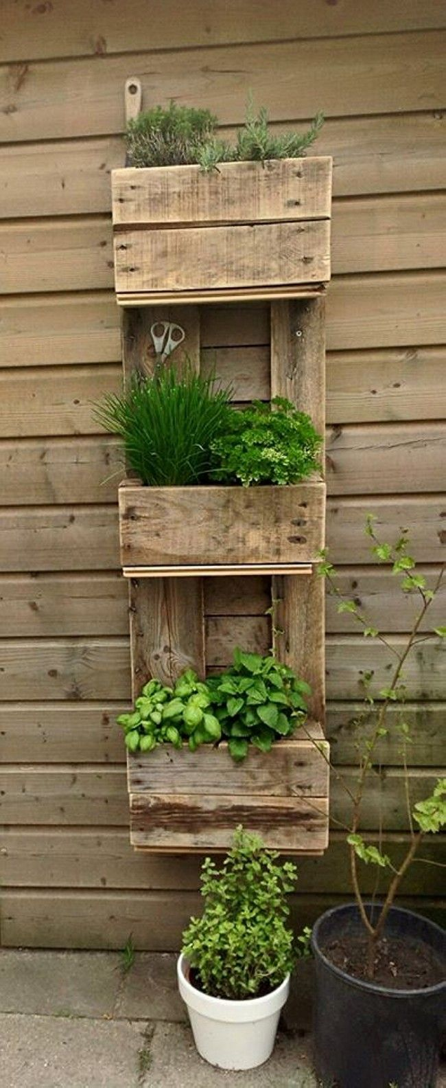 Home Decor Ideas With Wood Pallet    Create A Wall Hung Pallet Herb Garden  To Keep Fresh Herbs Close By.