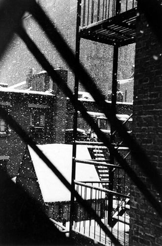 David VESTAL :: From Back Window at 133 West 22nd St., New York, 1958
