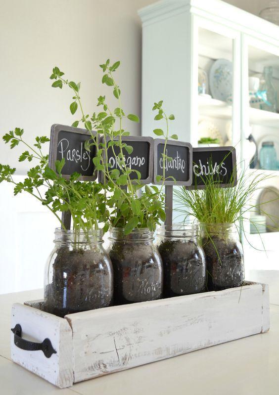 Tabletop Indoor Herb Garden Indoor Herb Garden Herbs Indoors