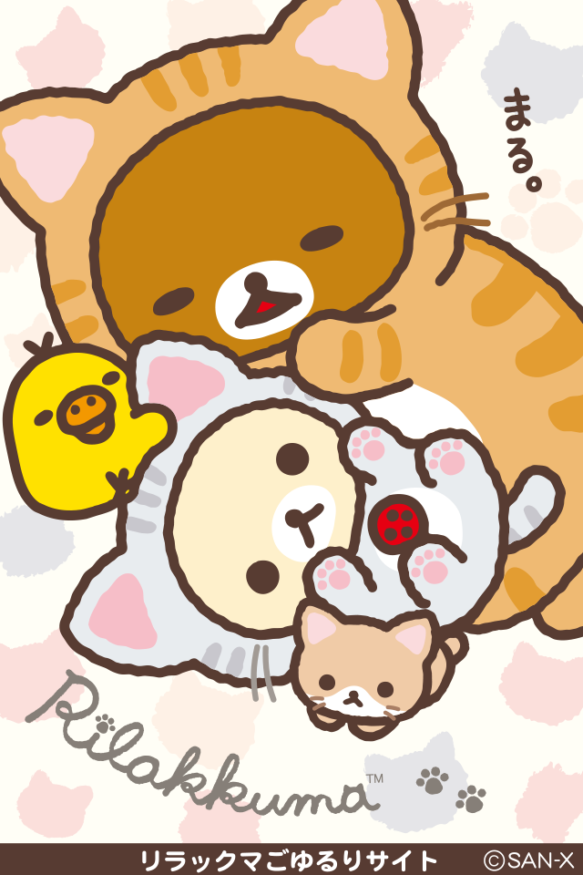 cat dressed Rilakkuma cute iPhone 4 wallpaper C A T S