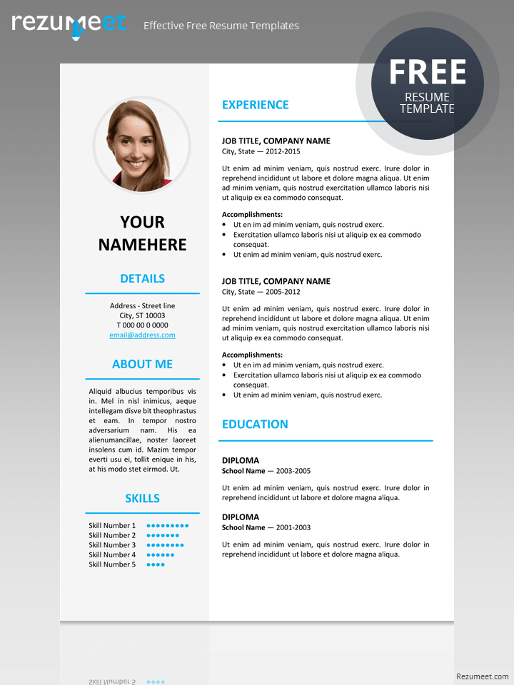 Elegant Free Resume Template  Classic Resume Templates