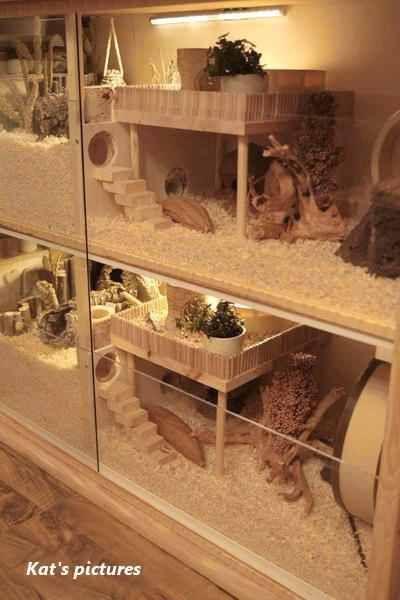 Idea by Johanna Kristiina Eleonora on cages Hamster