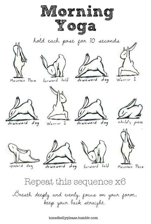 Bunny Yoga and Breathing