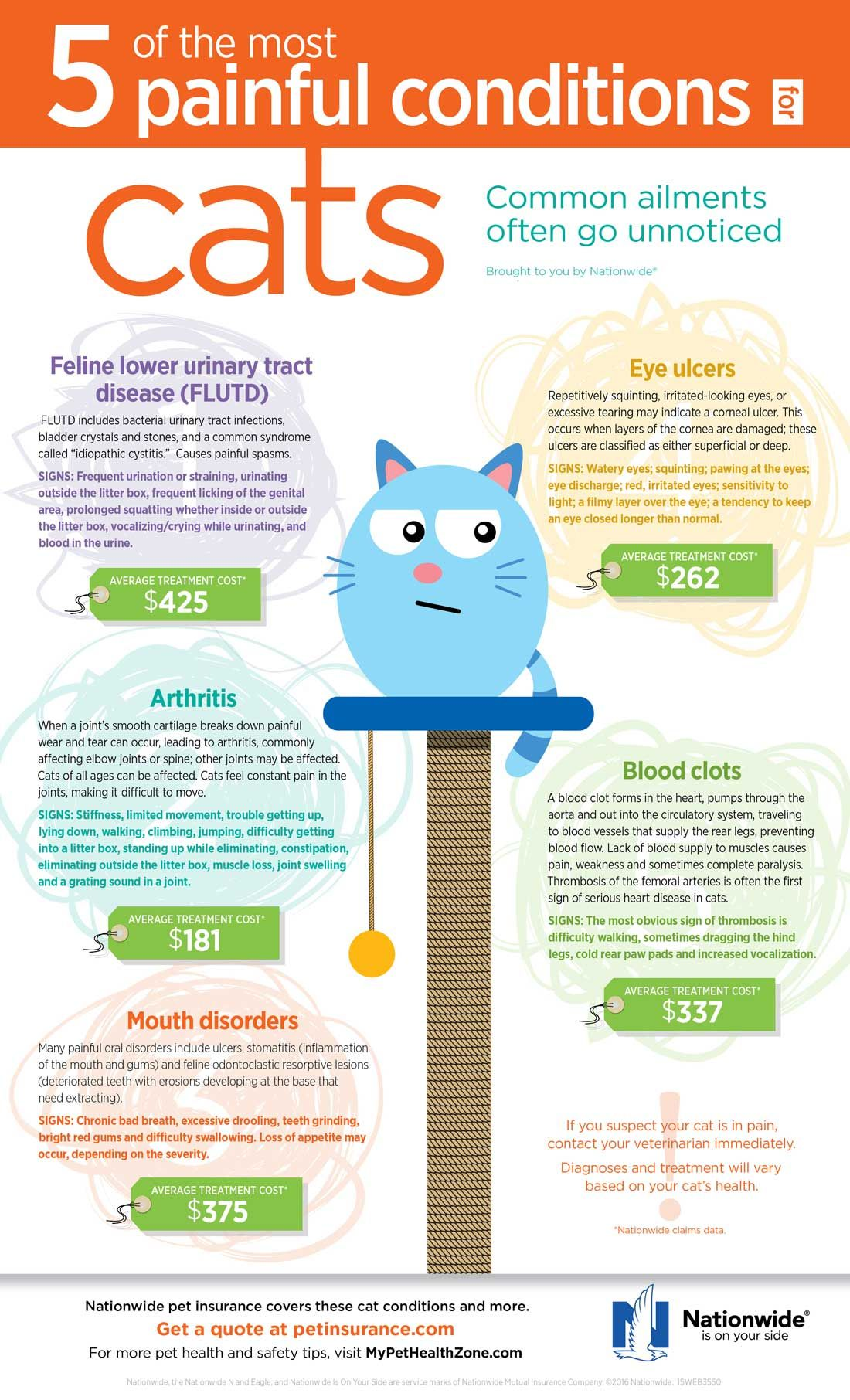 5 Of The Most Painful Conditions For Cats In 2020 Cat Health Care Cat Infographic Cat Health