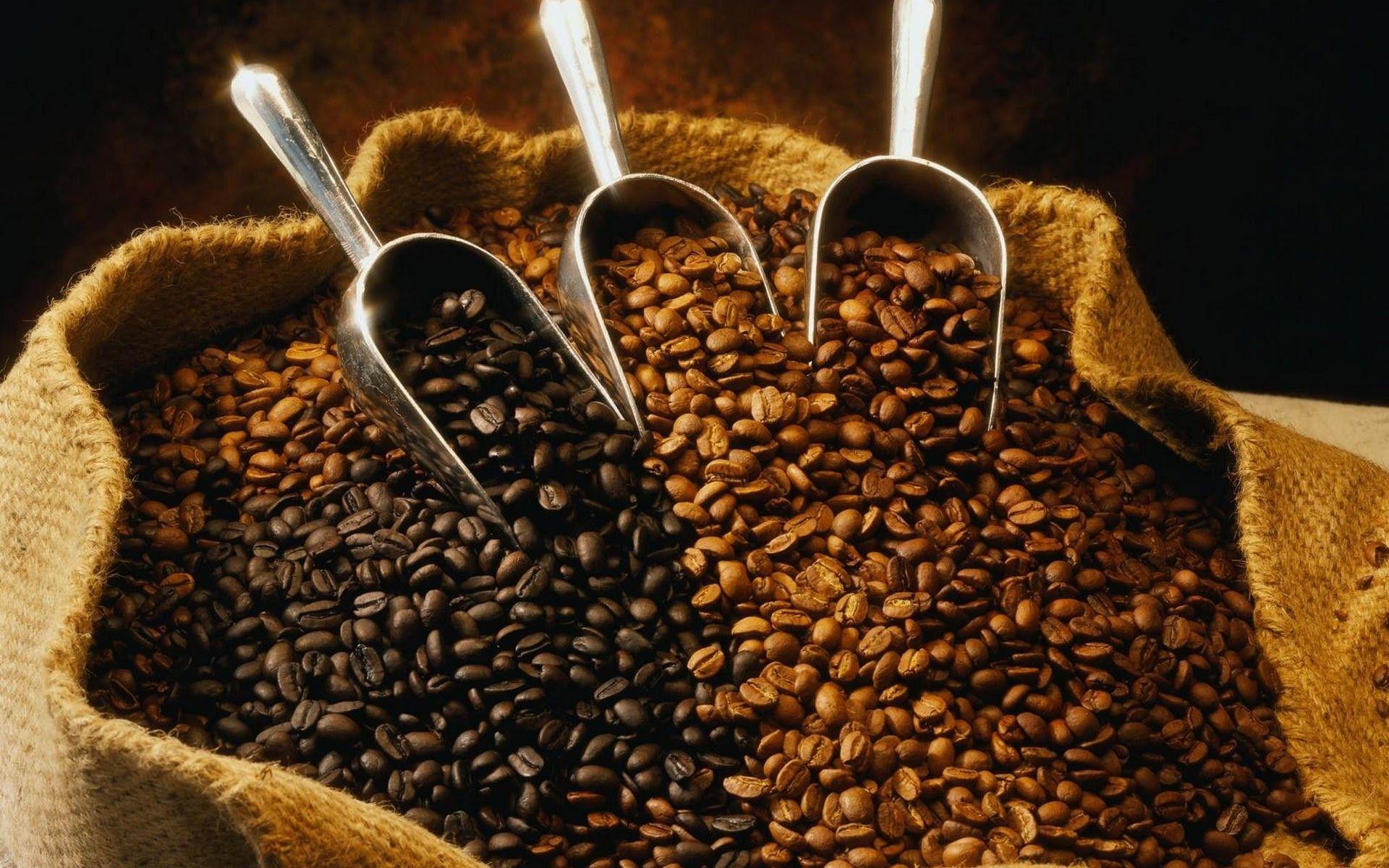 Pin de ECOVENTURE en Coffee Process Granos de café