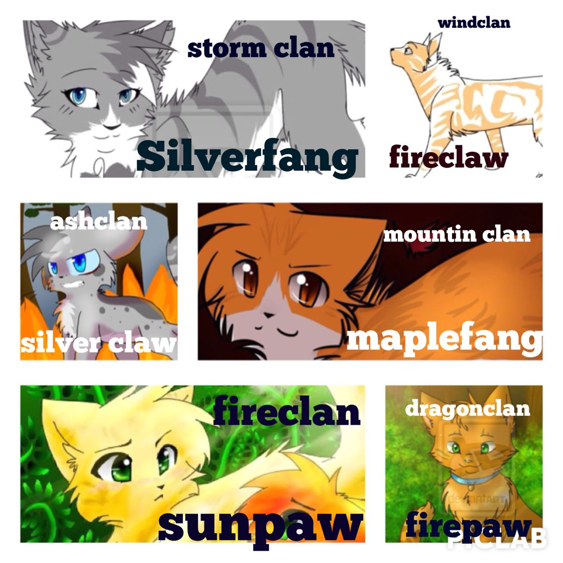 how to make a warrior cat oc