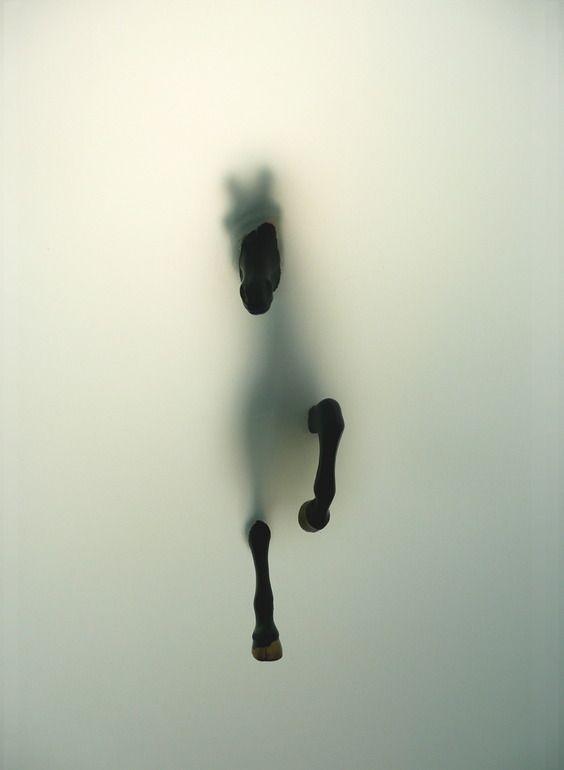 Subversion I   by Miriam Sweeney